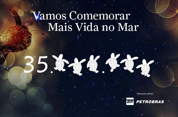 Projeto TAMAR comemora 35 Milhões de tartarugas marinhas protegidas no Brasil
