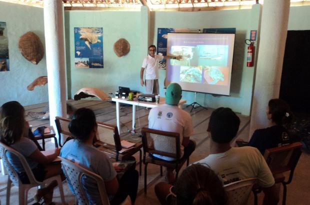 Rede Jaboti Assobiador une instituições para resgatar tartarugas nas praias de Fortaleza