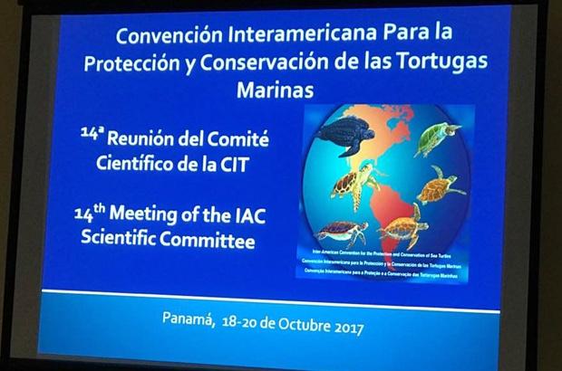 TAMAR participa da 14ª Reunião do Comitê Científico da CIT
