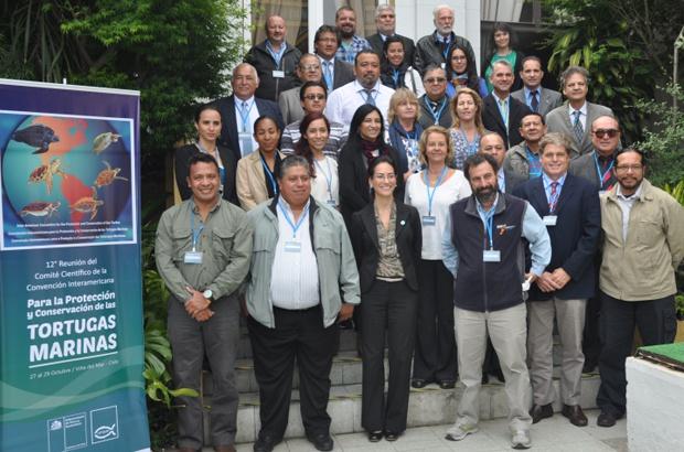 Reunião do Comitê Científico da CIT discutiu nova resolução para reforçar proteção da tartaruga cabeçuda