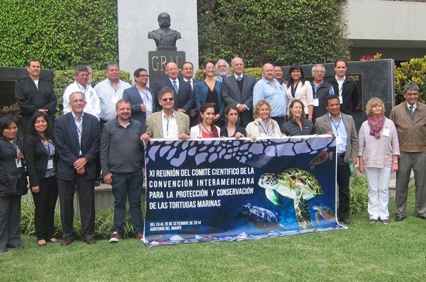 Comitê científico da CIT reuniu especialistas em tartarugas marinhas