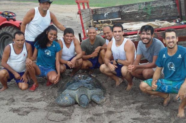 Militares ajudaram a salvar um macho de tartaruga-verde na ilha da Trindade
