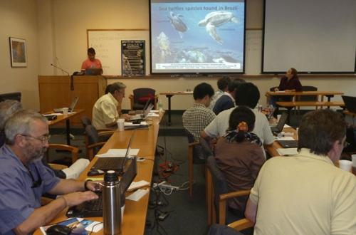 Interação tartarugas e pesca teve balanço em reunião internacional