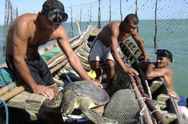 Parceria com pescadores do Cear�: ganhos para as tartarugas e comunidades