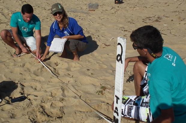 Nova fase de estudo analisa impactos de mudanças climáticas em tartarugas marinhas