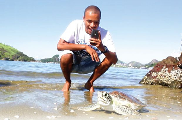 Tamar apoia aplicativo que engaja cidadãos na conservação das tartarugas marinhas