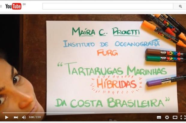 Pesquisa sobre tartarugas marinhas é selecionada para a final do Science Slam Brasil