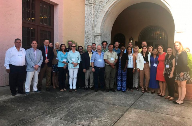 Pesquisadores do Projeto Tamar participam de reunião do comitê científico da CIT