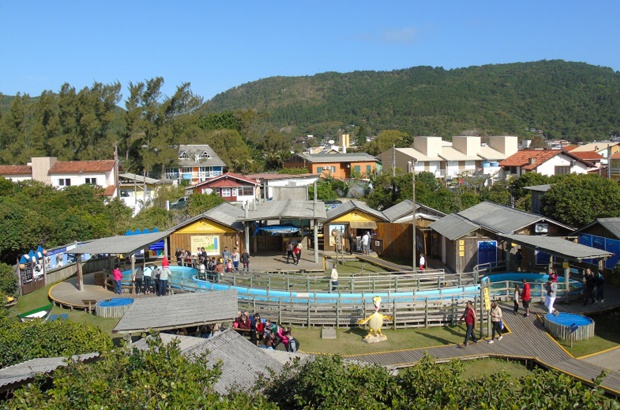 TAMAR Florianópolis tem novidade para quem curte tecnologia