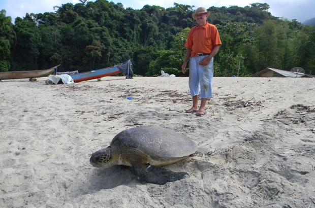 Pescadores têm papel fundamental na pesquisa sobre a tartaruga-verde