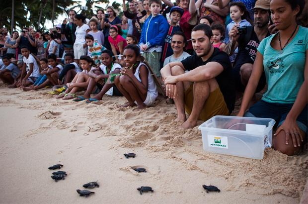 Atividades de junho tiveram intensa participação dos amigos das tartarugas e dos oceanos