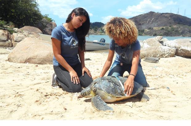 Colaboração da comunidade salva tartaruga marinha em Vitória