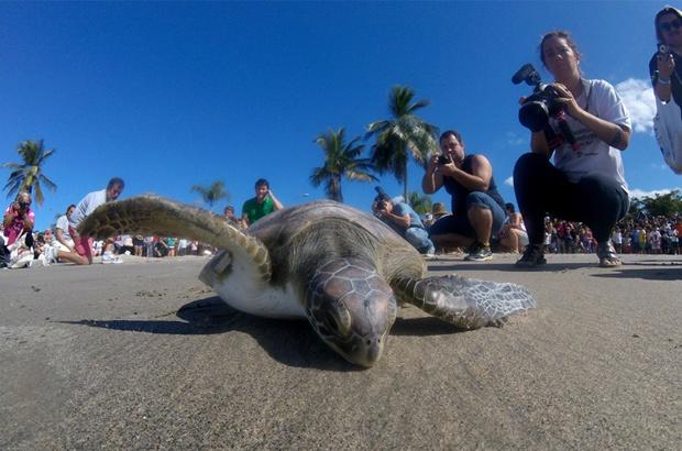 V Semana do Mar tem programação especial no Mês dos Oceanos em Ubatuba-SP