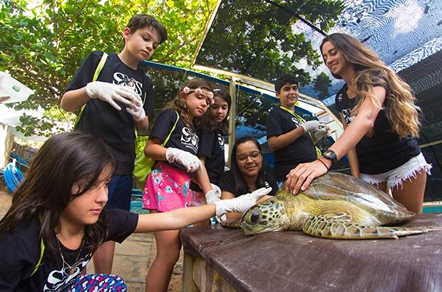 Experiências educativas aproximam crianças da conservação das tartarugas marinhas