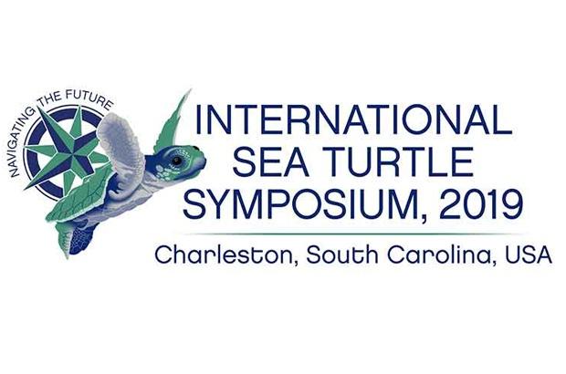 TAMAR participa de simpósio internacional de tartarugas marinhas