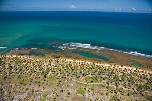 Oficinas apontam caminhos para criação de unidade de conservação na Praia do Forte