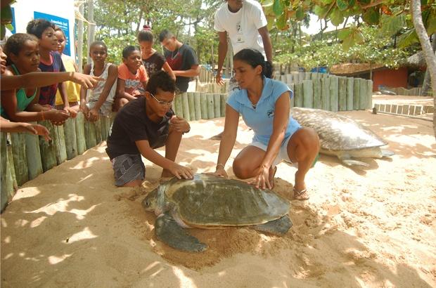 Programa Tamarzinhos inicia novas turmas na Praia do Forte